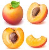 在白色背景隔绝的切片成熟杏子集合 免版税库存照片