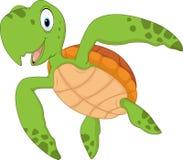 在白色背景隔绝的动画片乌龟 库存照片