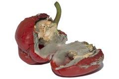 在白色隔绝的发霉的红色甜椒 免版税库存图片