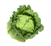 在白色背景隔绝的圆白菜,不用阴影 库存照片