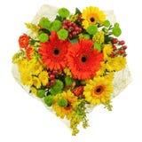 从在白色背景隔绝的大丁草的五颜六色的花束。 免版税库存照片