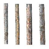 在白色背景隔绝的套四木材 免版税库存图片