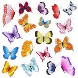 在白色背景隔绝的套多彩多姿的蝴蝶 库存照片
