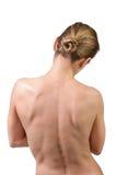 妇女肌肉后面 库存照片