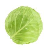 在白色背景隔绝的嫩卷心菜,不用阴影 免版税图库摄影