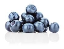 在白色背景隔绝的小组新鲜的蓝莓 图库摄影