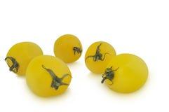 在白色背景隔绝的小组黄色蕃茄 库存照片