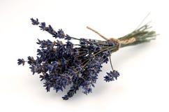 在白色背景隔绝的干淡紫色花束 免版税库存照片