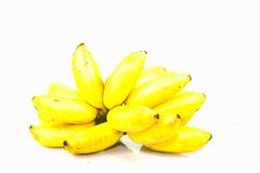 从在白色背景隔绝的庭院的Yello香蕉 免版税库存图片