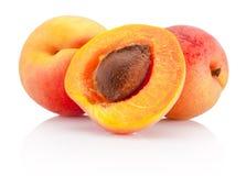 在白色背景隔绝的新伐杏子果子 库存照片
