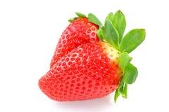 在白色背景隔绝的新鲜的庭院草莓果子 免版税库存照片