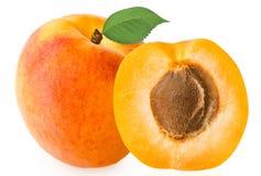 在白色背景隔绝的新鲜的杏子 免版税库存照片