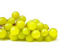 在白色背景隔绝的新鲜的绿色葡萄 免版税库存照片