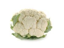 在白色背景隔绝的新鲜花椰菜 免版税库存图片