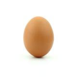 在白色背景隔绝的未加工鸡蛋 库存照片