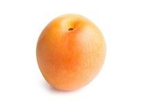 在白色背景隔绝的杏子 库存图片