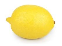 在白色背景隔绝的柠檬 库存图片