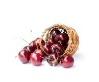 在白色背景隔绝的柳条筐的樱桃 免版税库存图片