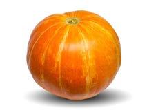 在白色背景隔绝的橙色南瓜 库存图片
