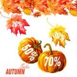 在白色背景隔绝的汇集美丽的五颜六色的秋叶 库存照片