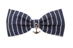 在白色背景隔绝的海洋蝶形领结 辅助海ancho 免版税图库摄影