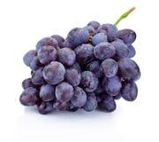 在白色背景隔绝的湿束蓝色葡萄 免版税库存图片