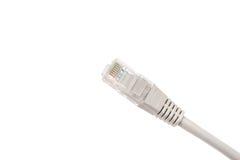 在白色背景隔绝的灰色计算机以太网电缆,特写镜头 免版税库存图片