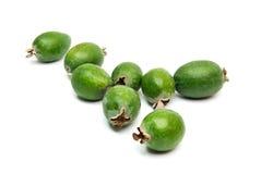 在白色背景隔绝的热带水果feijoa 库存图片