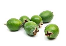 在白色背景隔绝的热带水果feijoa 免版税库存图片