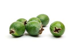 在白色背景隔绝的热带水果feijoa 免版税库存照片