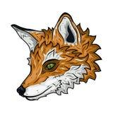在白色背景隔绝的狐狸头的例证 免版税图库摄影