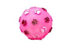 在白色背景隔绝的狗的球玩具 库存照片