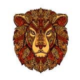 在白色背景隔绝的狮子头 手拉的向量例证 图库摄影