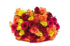 在白色背景隔绝的玫瑰美丽的花束  免版税库存图片