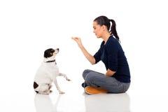 妇女训练宠物 免版税库存照片