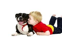 年轻在白色背景隔绝的男孩和狗 免版税库存照片