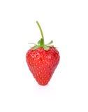 在白色背景隔绝的红色莓果草莓 图库摄影