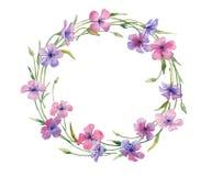在白色背景隔绝的花卉花圈的水彩例证 库存照片