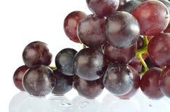 在白色背景隔绝的葡萄 库存照片