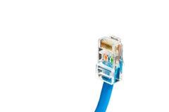在白色背景隔绝的蓝色计算机以太网电缆,特写镜头 库存图片