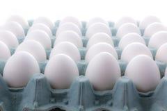 在白色背景隔绝的蛋包装 免版税库存图片