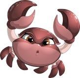 在白色背景隔绝的螃蟹 免版税库存照片