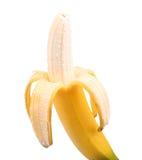 在白色背景隔绝的被打开的成熟香蕉 半被剥皮的香蕉 结果实热带 美味的香蕉 唯一新鲜的香蕉果子 库存照片