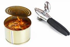 在白色背景隔绝的西红柿酱的罐装鱼西鲱 免版税库存图片