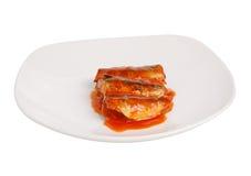 在白色背景隔绝的西红柿酱的罐装鱼 图库摄影