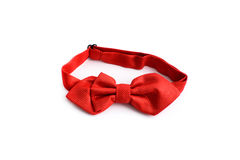 在白色背景隔绝的领带红色 图库摄影