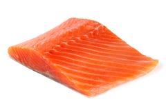 在白色背景隔绝的鳟鱼内圆角 免版税库存照片