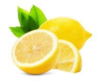 在白色背景隔绝的水多的柠檬 免版税库存图片