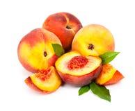 在白色背景隔绝的水多的桃子 免版税库存图片