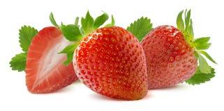 在白色背景隔绝的水平的草莓构成 免版税库存图片